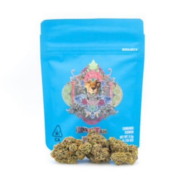 Buy Cheetah Piss Cookies Online | Cheetah Piss Cookie | Cookies maywood