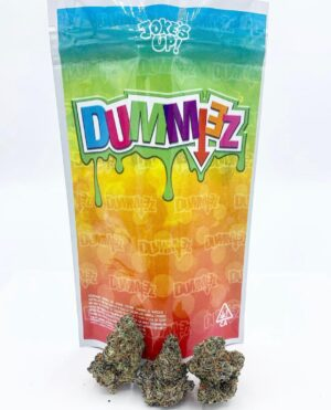 Buy Dummiez Strain by JokeUp Online | Dummiez Strain by JokeUp for Sale Online | Order Dummiez Strain by JokeUp Online | Where to Buy Dummiez Strain by JokeUp Online