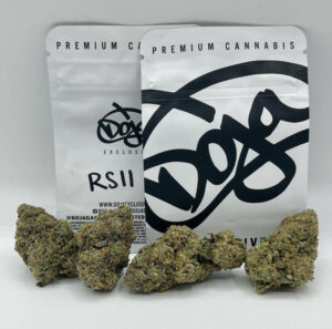 RsII Doja Strain | Buy RsII Doja Strain | RsII Doja Strain For Sale